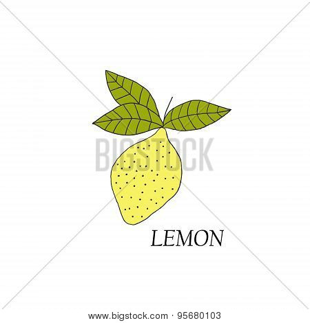 Hand drawn illustrations of yellow lemon
