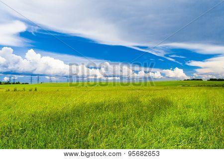 Grass Land Nobody Outside