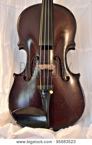 Antique Violin Against White, Vertical