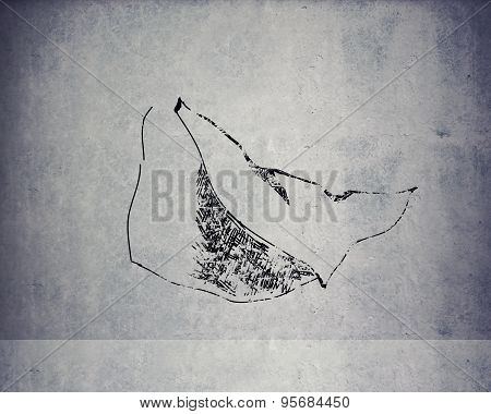 Texture wall background with drawn cloak