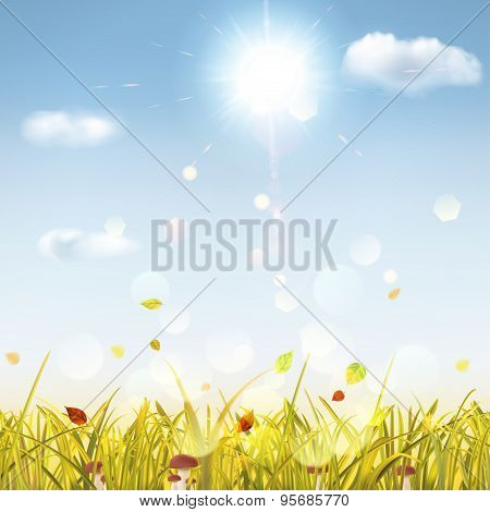 Autumn Background With Grass, Mushrooms, Sun And Clouds