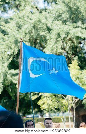 East Turkestan waving flag