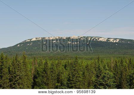 Ridge Zyuratkul