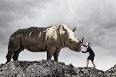 picture of rhino  - Businesswoman making effort to move huge rhino - JPG