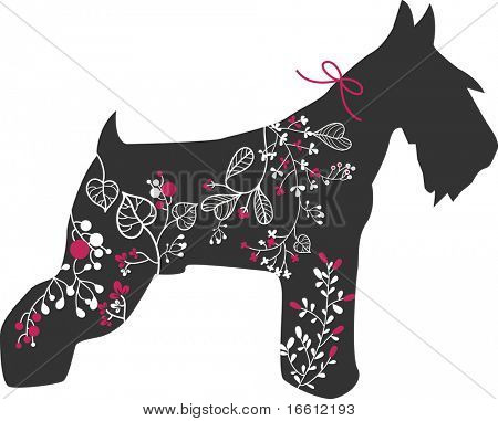 miniature  schnauzer with floral design