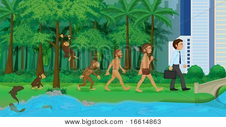 very detailed evolution illustration from water to land