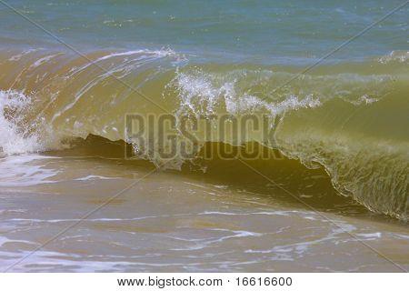the curl of a shore break