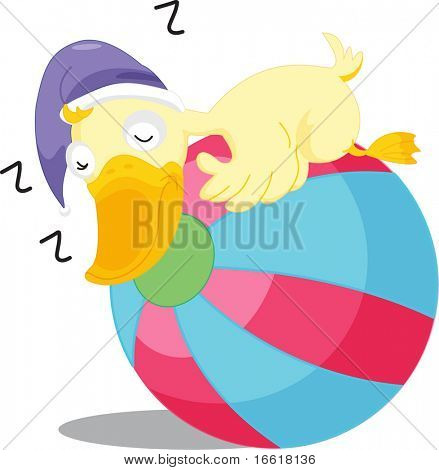 an illustration of a duck sleeping on a beach ball