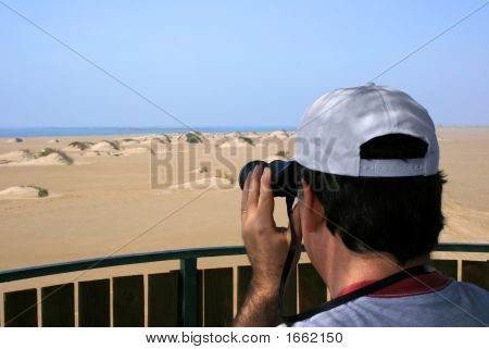 Man Birdwatching