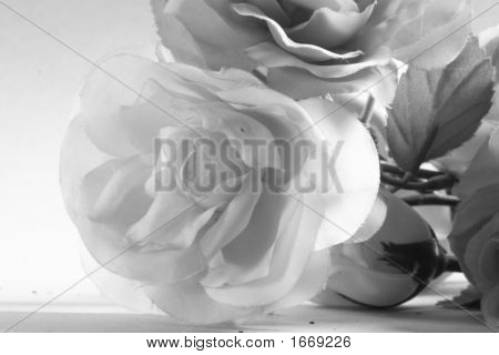 Plastic Rose 3