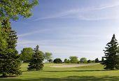 Spring Golfing Weather poster