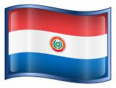 Paraguay Flag Icon. ( With Clipping Path )