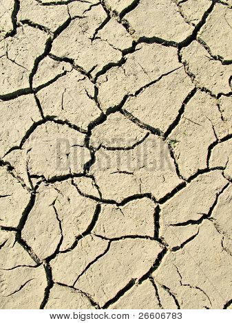 Droughty lake bottom