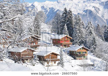 Swiss Bauernhöfe