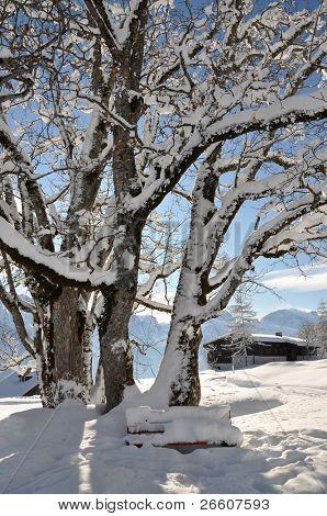 Alpine scenery. Braunwald, Switzerland