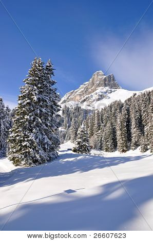 Eggstoeke mount 2449m. Braunwald, Switzerland