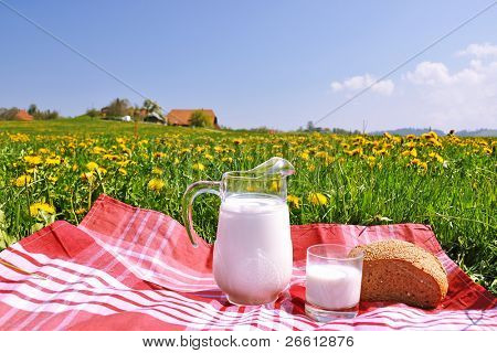 Jug of milk and bread on the spring meadow. Emmental region, Switzerland