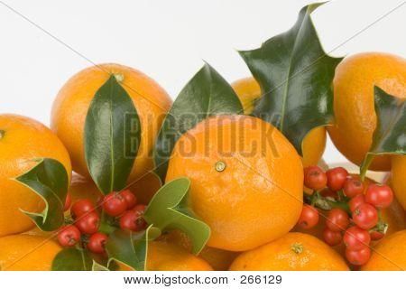Clementines And Holly