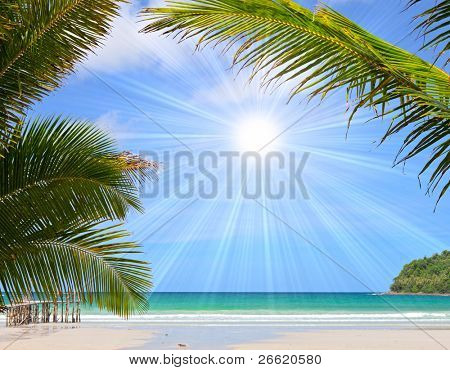 Beautiful tropical beach in the Islands