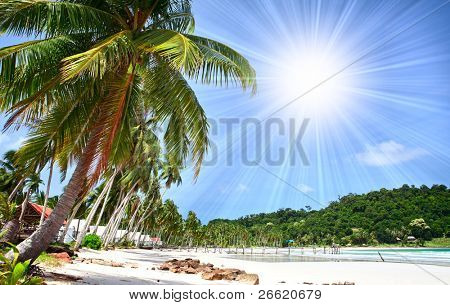 Palm trees on white sand beach under blue sky with bright sun and island in the sea