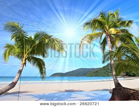 shining sun on nice beach with palm trees poster id 26620721