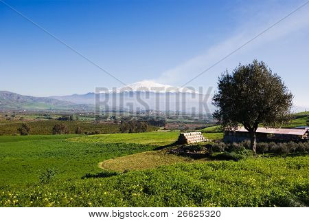 rural landscape and snowy volcano etna