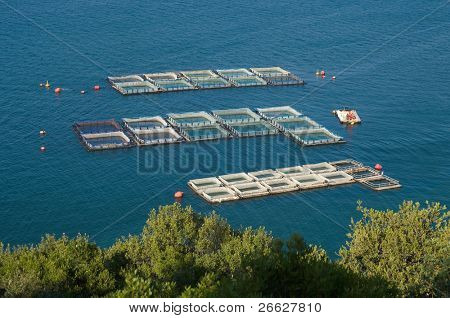 fisheries in the sea of Igoumenitsa, Greece (squares)