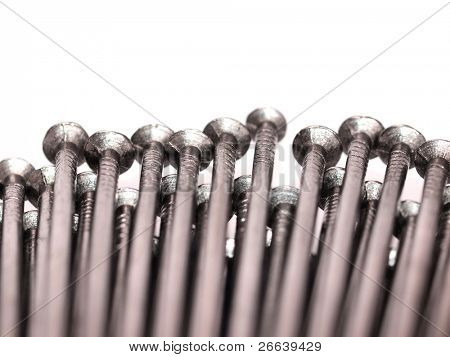 Macro shot of iron nails heads