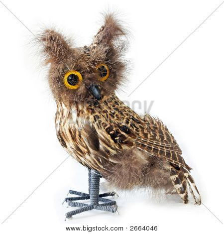 Staffed Owl