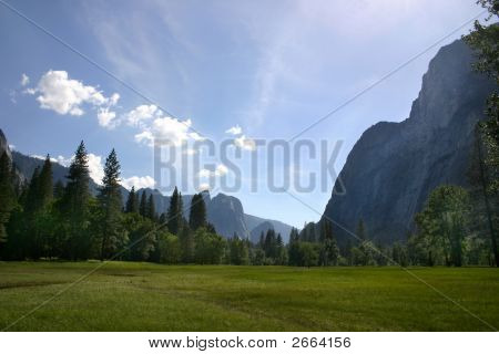 Yosemite Meadow View