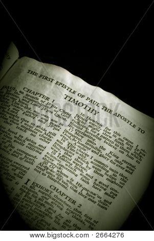 Bíblia série Timothy sépia