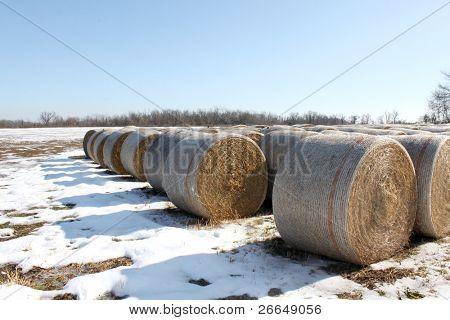 Fianzas de heno en campo cubierto de nieve