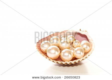 Pearls in seashell