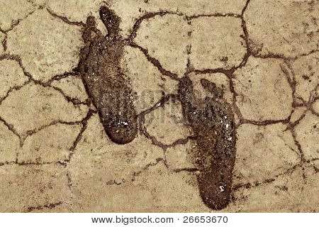 Foot print on dry mud