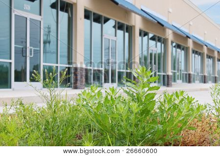 Empty business building with grass overgrowth
