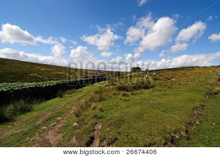 The green moorlands in the North Yorkshire, England countryside.