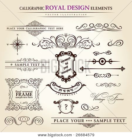 calligraphic elements vintage set. Hand retro written feather vector
