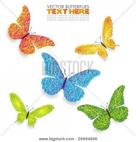 Green yellow blue orange butterflies isolated on white hand drawn. Vector illustration
