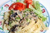 Vegetarian Mushroom Cream Pasta Sauce Salad poster
