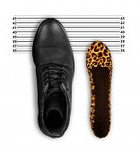 Womens Shoes And Mens Shoes, Symbolic Photo For Partnership And Equality poster