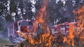 Fire Trucks By Fire. Ignite Tree Needles Dangerous To Forest. Scene. Unsafe Active Rest On Nature Wi poster