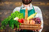 Fresh Organic Vegetables In Wicker Basket. Farmer Presenting Fresh Vegetables. Farmer With Homegrown poster