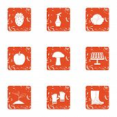 Grow Grass Icons Set. Grunge Set Of 9 Grow Grass Icons For Web Isolated On White Background poster