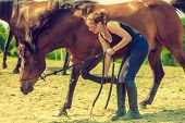 Animal And Human Love, Equine Concept. Jockey Woman Taking Care Of Horse poster