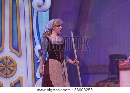 "Cinderella In ""rags"" Cleaning"