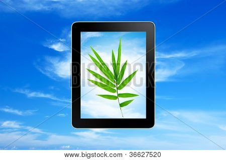 Plant growing in tablet pc over blue sky