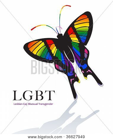 Butterfly In Rainbow Color Scheme