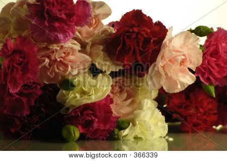 Cascading Carnations