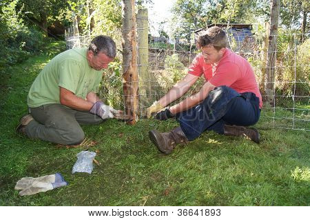 Fixing a Fence