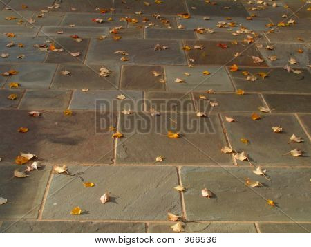 Patio In Autumn
